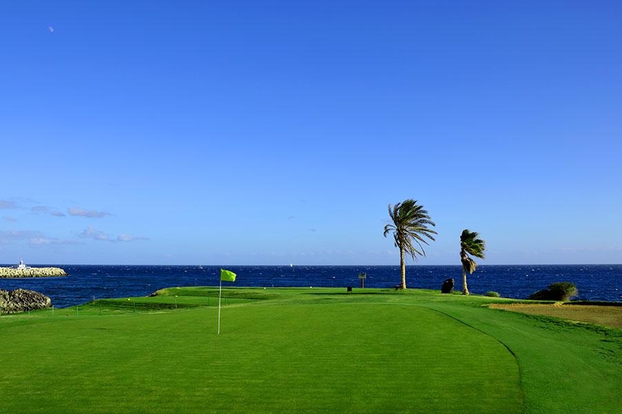 Amarilla Golf 2