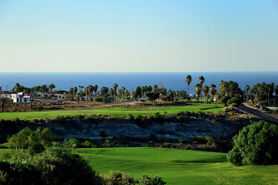 Amarilla Golf 3