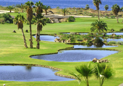 Golf Costa Adeje Tenerife 2