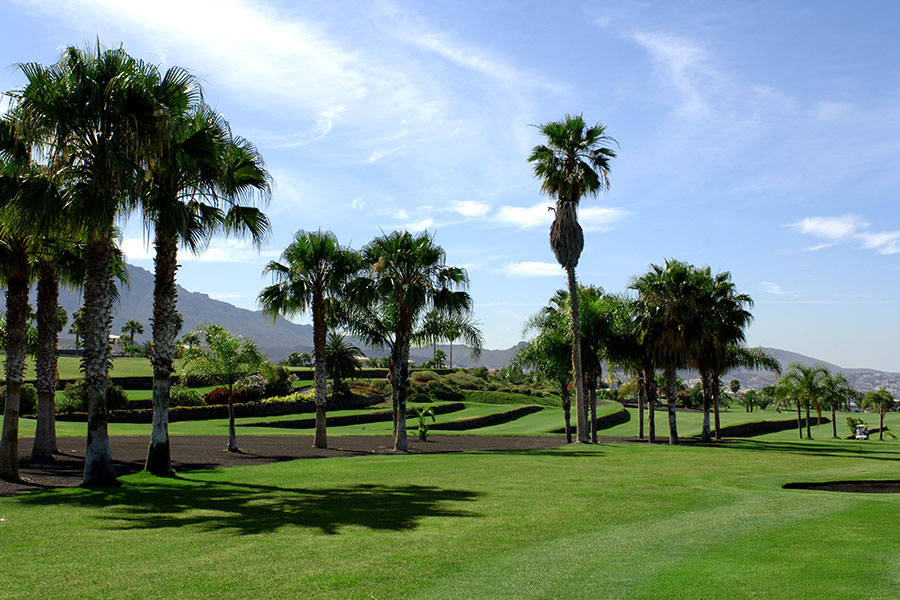 Golf Costa Adeje Tenerife 7