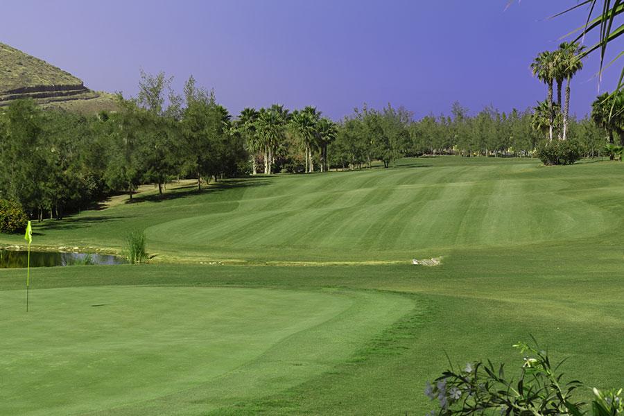 Golf Las Americas Tenerife 5