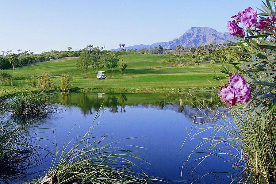Golf Las Americas Tenerife 6